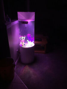 Only 2 left, selling off very cheap,brand new cylinder 30 gallon