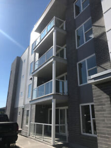 3 Bedrooms 2 bathroom available for Rent July 1st unit 301