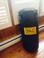 Excellent condition Everlast Punching/Kicking Bag