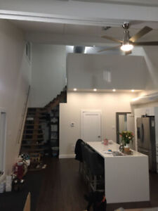 1 Bedroom Loft Style Apartment For Rent, Close to Newmarket