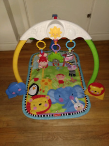 Fisher-Price Discover 'n Grow Musical Gym