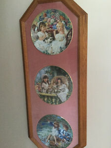 Bird pictures,collector plates with frame