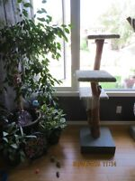 Handmade Cat Trees/Posts - very unique and beautiful!