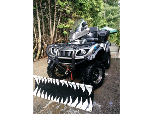 Used 2003 Yamaha Grizzly 660 Edition Silvertips