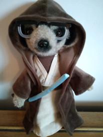 Star Wars Meercat Sergei