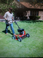Lawn care spring clean up