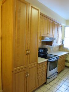 Portes d'armoires de cuisine et tiroirs en bois massif