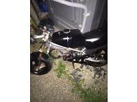 Mini Moto (blata)