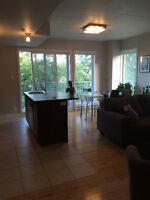 Beautiful 1 bedroom apt on the Lachine canal