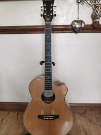 Epiphone Electro Acoustic and amp