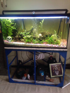 120 gallon fish that with over flow