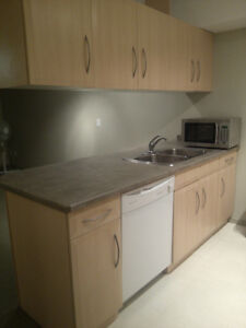 1 Bedroom condo downtown available immediately