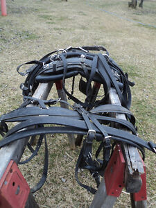 NEW PRICE! Harness maker crafted Biothane Driving Harness Belleville Belleville Area image 5