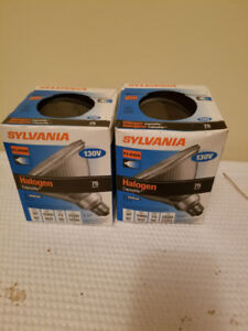 Sylvania Halogen Clear Flood Lights