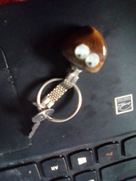 tiger eye key ring
