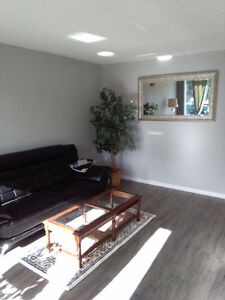 House full of real estate staging   $500.00