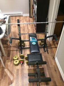 bench avec poids d'entrainement
