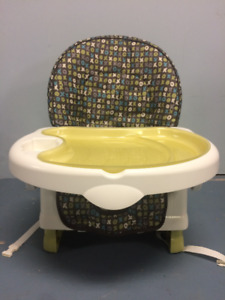 Safety First Recline and Grow Booster Seat - $35