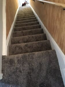 Perrys carpet s for 29 years Kitchener / Waterloo Kitchener Area image 5