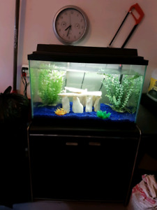 NiceGreat condition fish tank with standand everything you need
