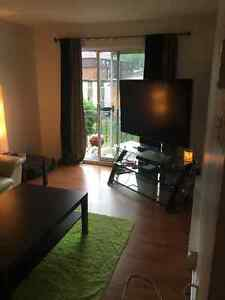 A must see large two bedroom appartment currently vacant Gatineau Ottawa / Gatineau Area image 5