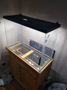 Selling 37 galon fish tank with stand and lid
