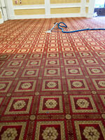 CARPET, AREA RUG, TILE GROUT  (35%OFF)  $ 59.99 Couch Cleaning