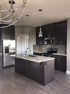 Built to perfection! Cambria quartz, open concept, and much more