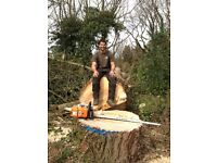 JDP SERVICES - Trees, gardens and landscaping