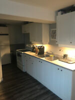 New All-Inclusive One Bedroom Basement Apartment for Rent