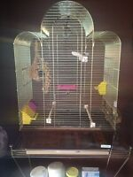 BIRD CAGE FOR $50