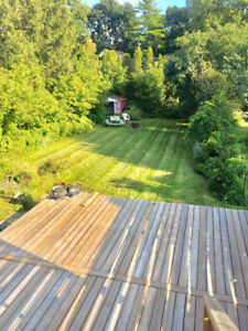 3 Bdrm Home for Rent, completely renovated, massive yard + deck!