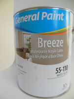 Gallon of Paint - New