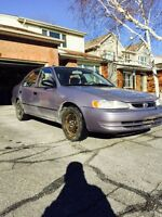 Toyota corolla great on gas and insurance