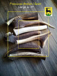 A Grade Antler dog chews by the pound (CWD Free)