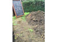FREE SOIL (GOOD QUALITY)