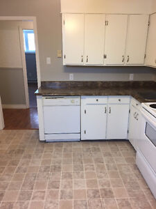 2 Bedroom Apartment for rent PETS CONSIDERED St. John's Newfoundland image 4