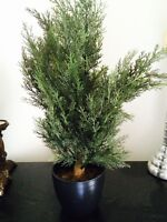 Fausse plante style sapin
