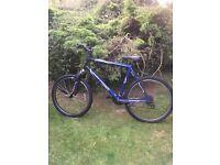 Gary fisher(trek)bike