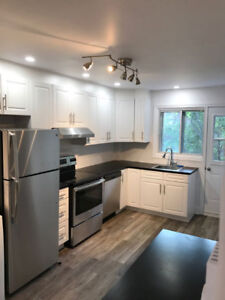 2 Bedroom Apartment in Little Burgundy near Downtown