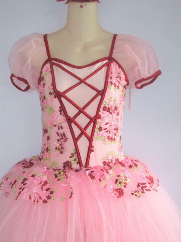 Pink Maiden Lacing Embroidered Peplum Ballet Curtain Call Costume ASM