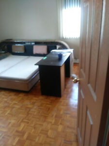 Appartment for rent  - 5 1/2 - available now