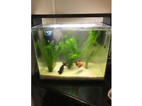 40 litre fish tank in glossy black