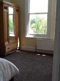 1 bed flat Preston park