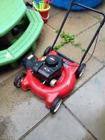 3.5 hp side discharge mower
