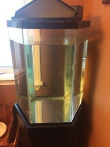 35 gallon hexagon fish tank