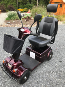 Motorized Scooter - ALL weather needs can be met! Great quality!