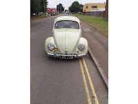 """""""HURRICANE CAR & MOTORCYCLE SALES"""" 1955 Oval Beetle"""