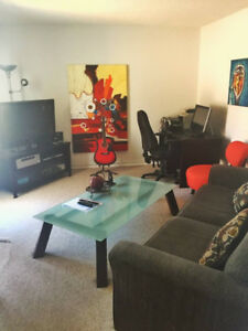 1BR Apartment Fully Furnished Available from November1(Sublease)