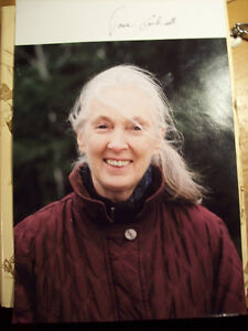 Jane Goodall signed 8x10 photo - Anthropologist, Primatologist